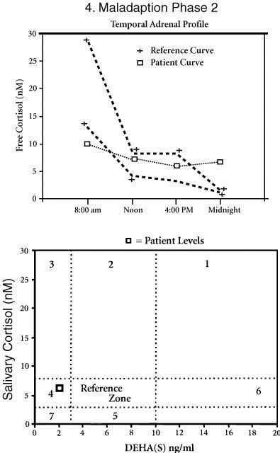 adrenal-4-maladaption-phase-2
