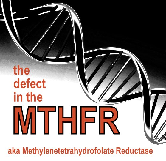 MTHFR genetic defect - Stop the Thyroid Madness™
